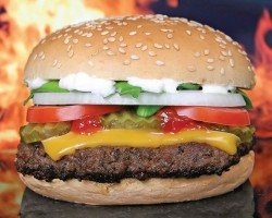A cheeseburger, the future of Kosher cooking?